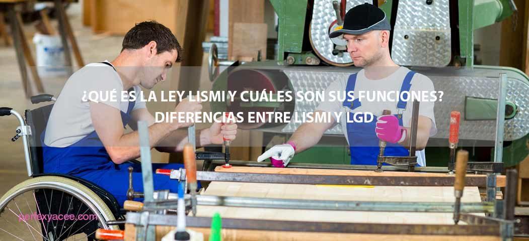 qué es la ley LISMI