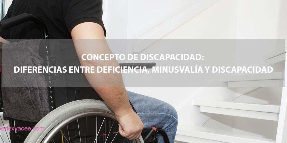 concepto real de discapacidad