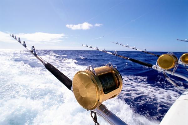 cómo limpiar una caña de pescar